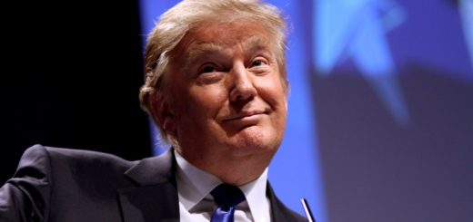 Porträt Donald