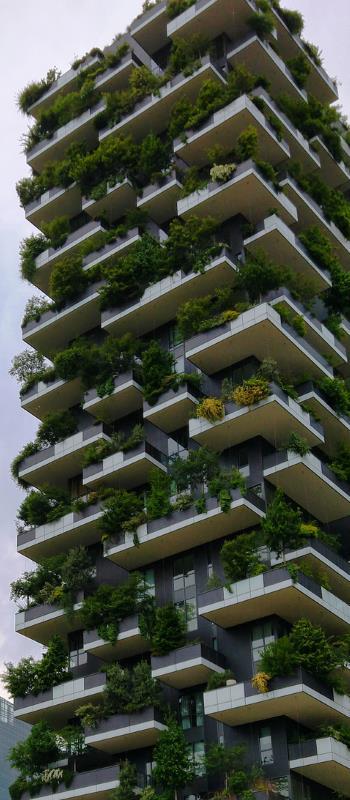 Hochhaus mit Bäumen bewachsen